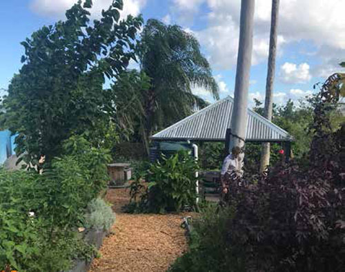 Pocket Community Garden in Brisbane. Photo provided by Dr Joanne Dolley, Research Fellow, Griffith University